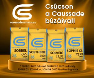 Caussade Kalászos