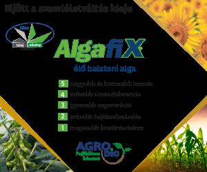 Algafix 2